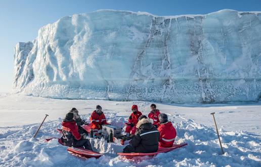Led pod drobnogledom