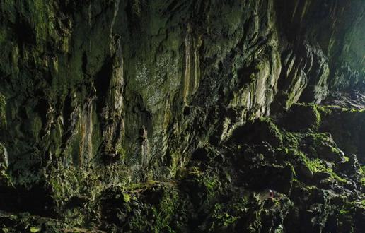 Podzemni svet Bornea