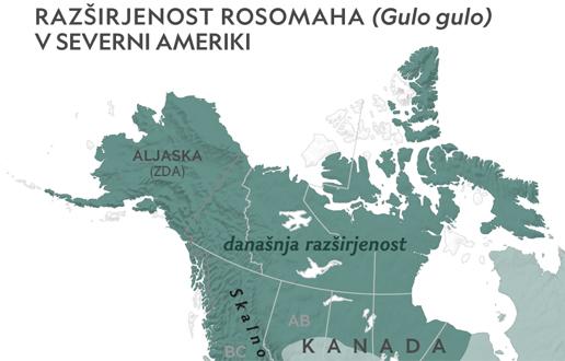 Rosomahi