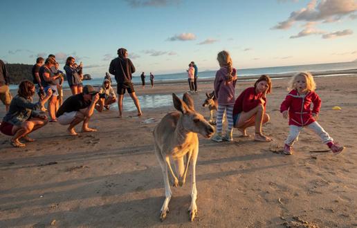 Sitnosti s kenguruji