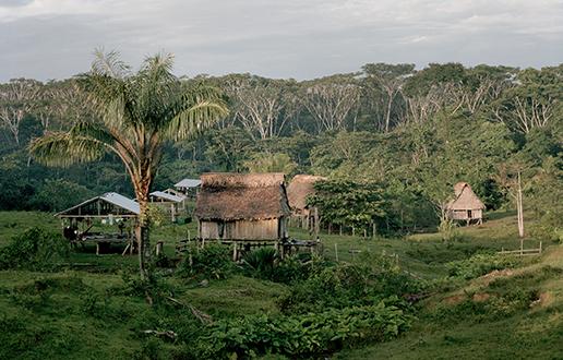 Sodobna Amazonija