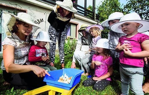 Urbano čebelarstvo